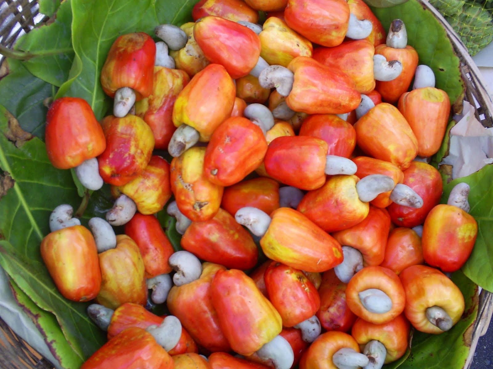 Le caju, un des fruits exotiques qu'on trouve à Rio de Janeiro