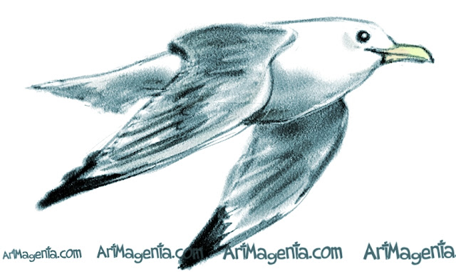 Kittiwake sketch painting. Bird art drawing by illustrator Artmagenta.