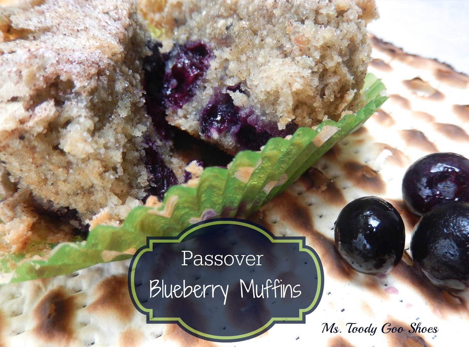 Passover Blueberry Muffins  --- Ms. Toody Goo Shoes
