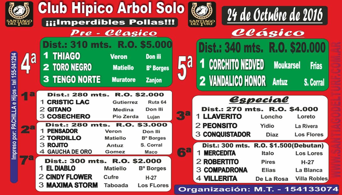 24-10-16-HIP. ARBOL SOLO-PROG.