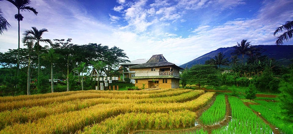 kampoeng bamboe lokasi outbound bogor paket outbound