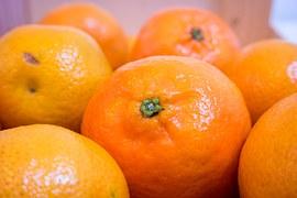 Daftar Makanan Buah Buahan Yang Baik Untuk Ibu Hamil