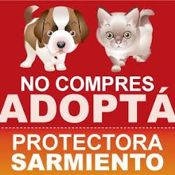 Sociedad Protectora de Animales Sarmiento
