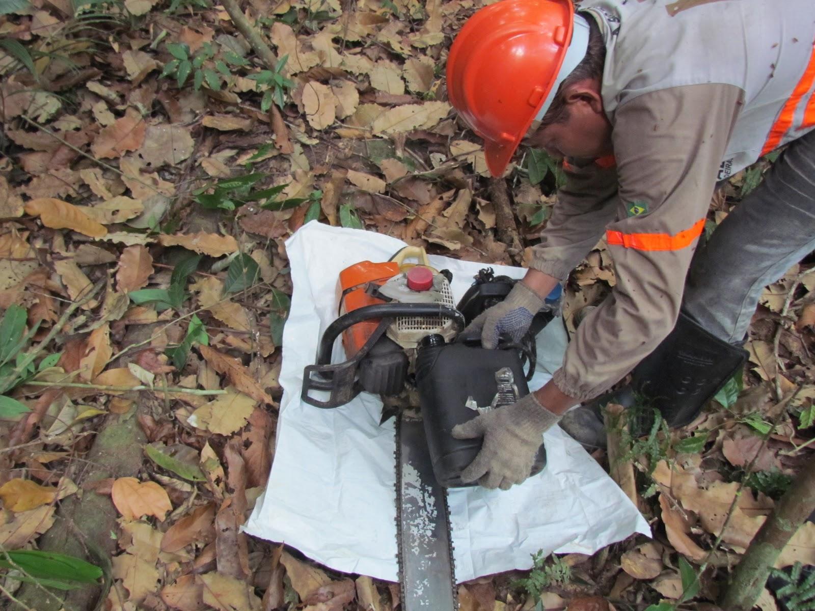 de arainhas e escorpiõezinhos só na limpeza do pé de uma árvore #B83E13 1600x1200