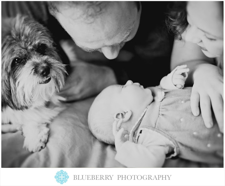 San Francisco adorable Newborn baby family photography session
