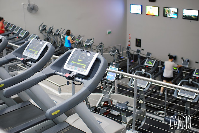 Fitness First Gym Parramatta Cardio Room