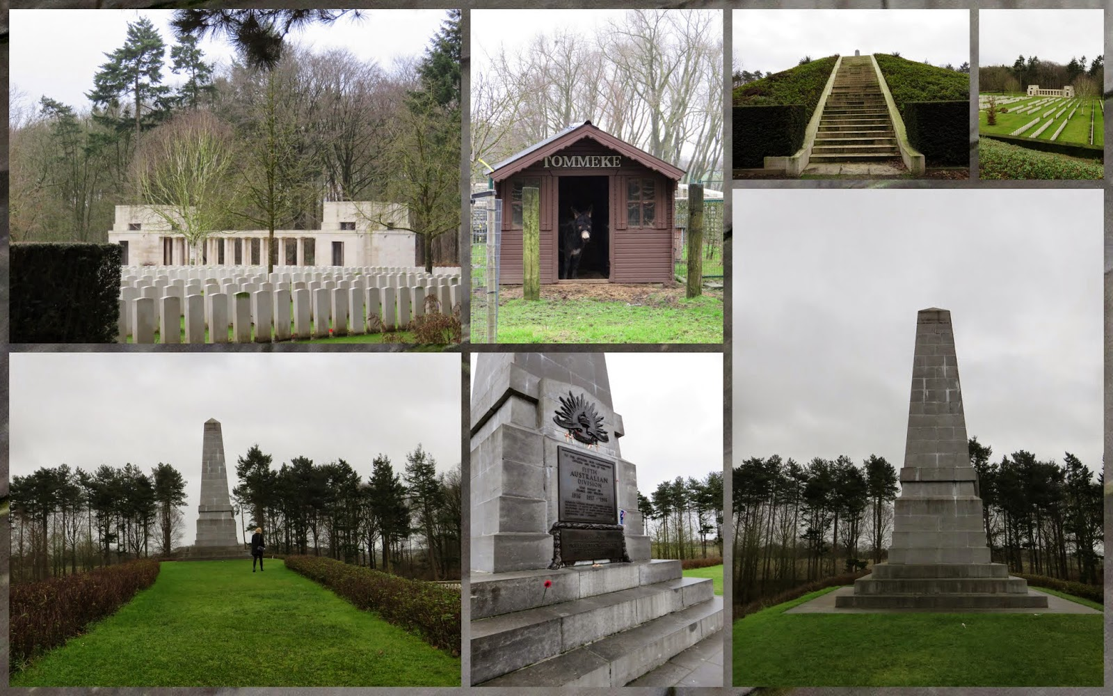 Polygon Wood - Flanders Fields