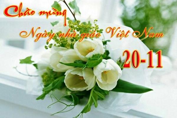 Tải hình ảnh hoa 20-11 tặng thầy cô