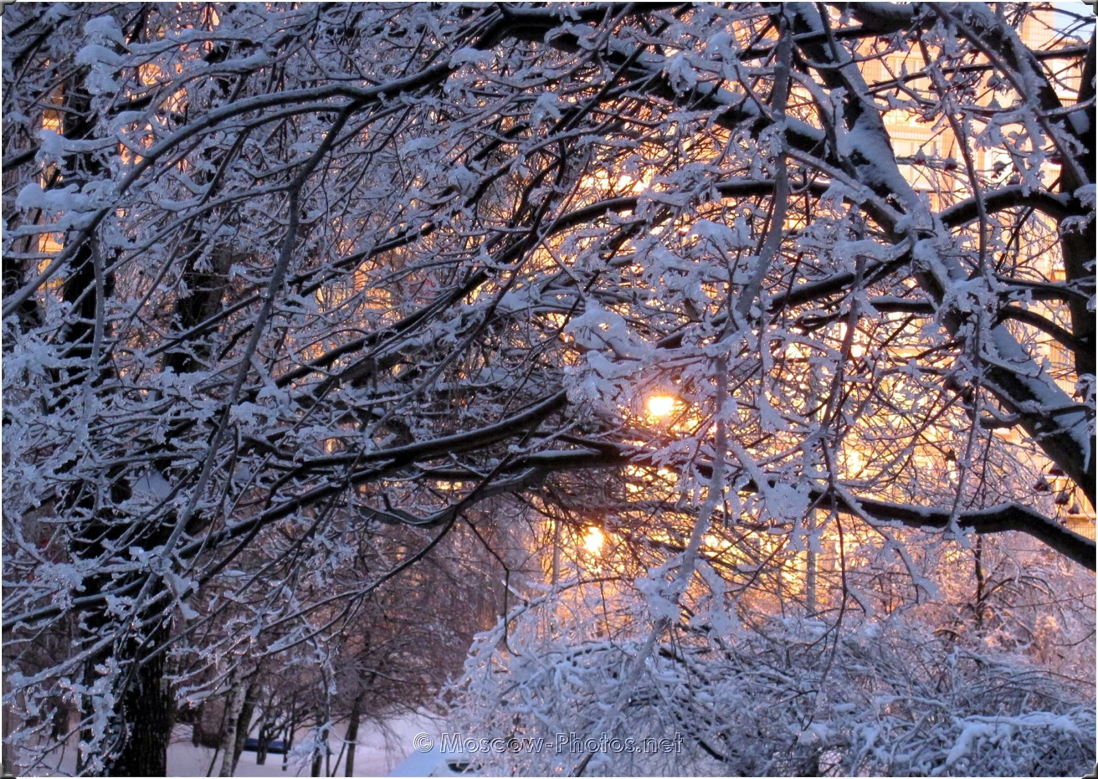 Snowy Moscow Winter