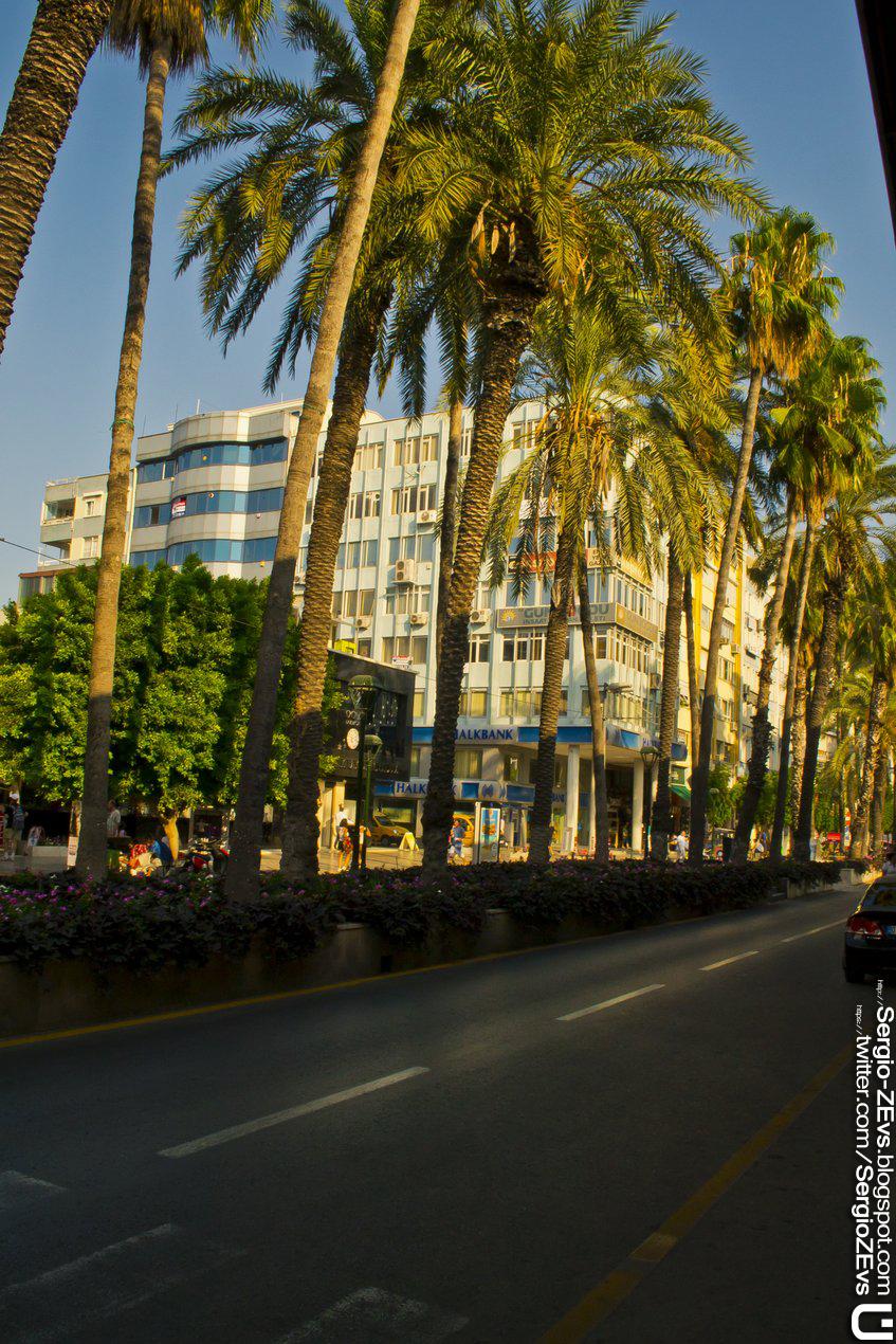 Ataturk Street, Boulevard, Palm, Atatürk Caddesi, Bulvarı, Antalya