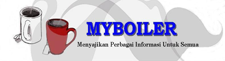 Info Boiler