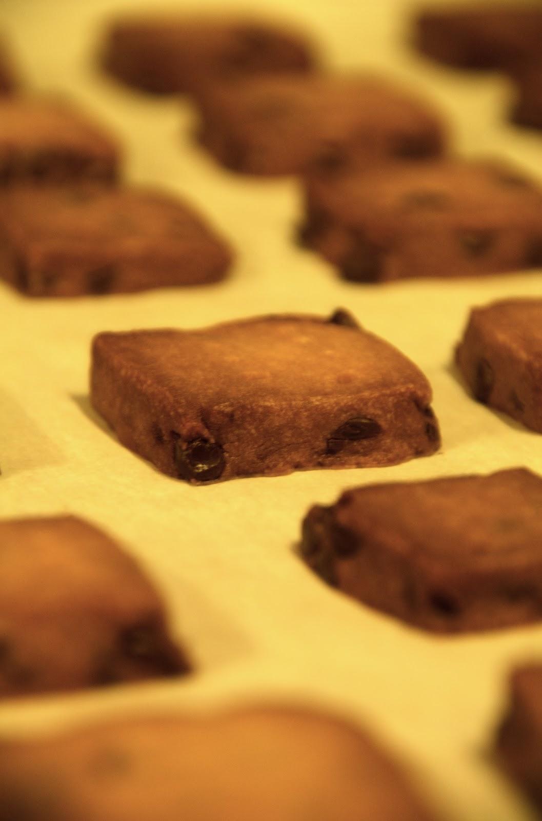 ... : Christmas Bliss: Espresso-Chocolate Shortbread Cookies