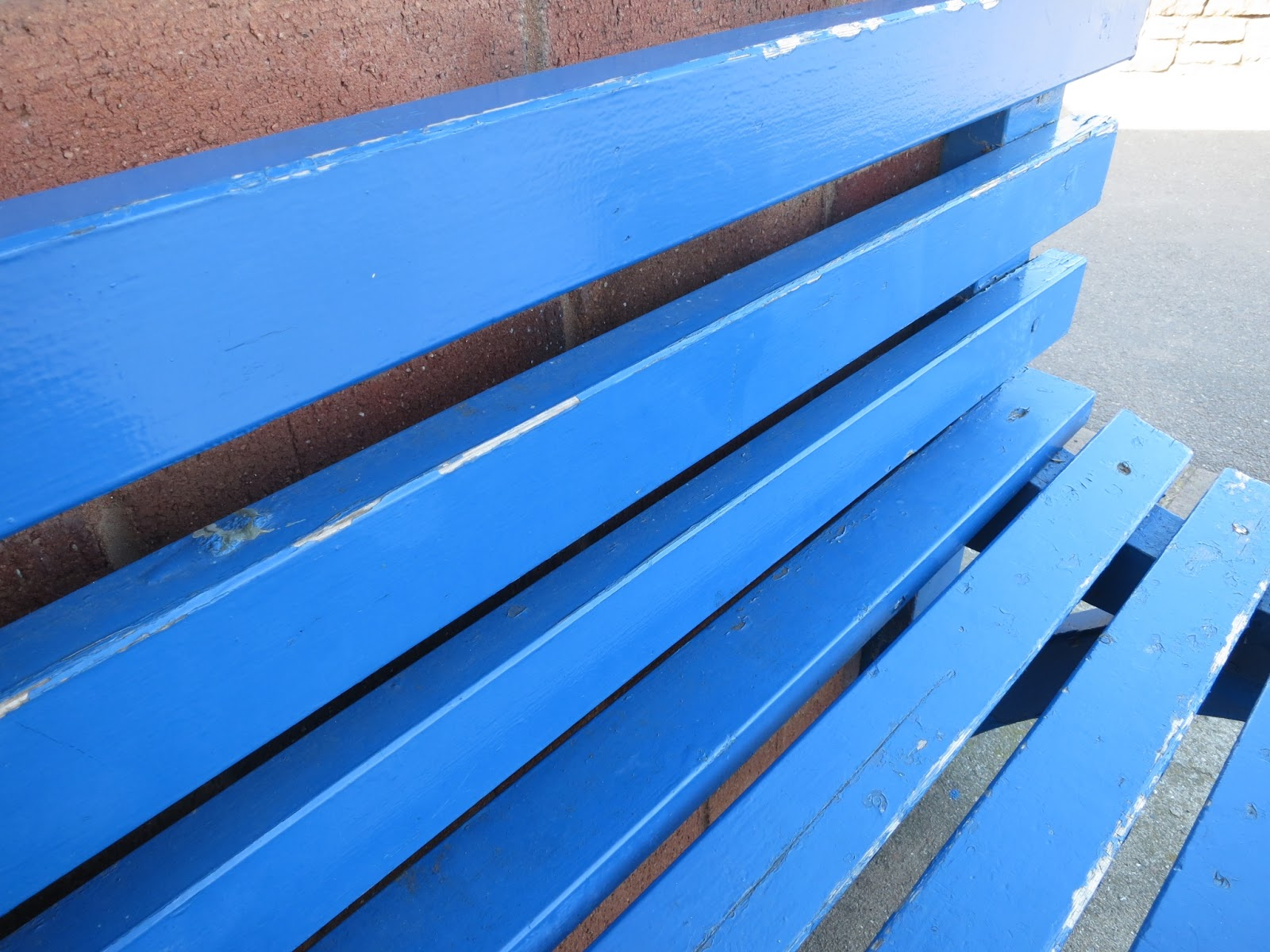 Blue painted wooden bench in seaside shelter