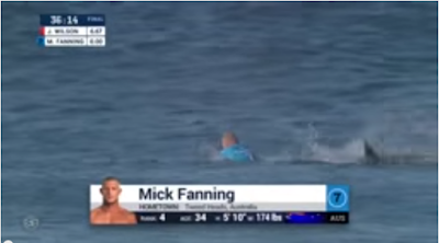 Surfer Mick Fanning Shark Attack Video