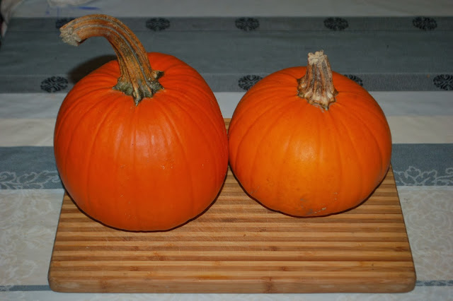 Dynia na Halloween - DIY