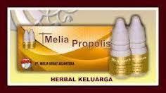 Propolis Melia Asli
