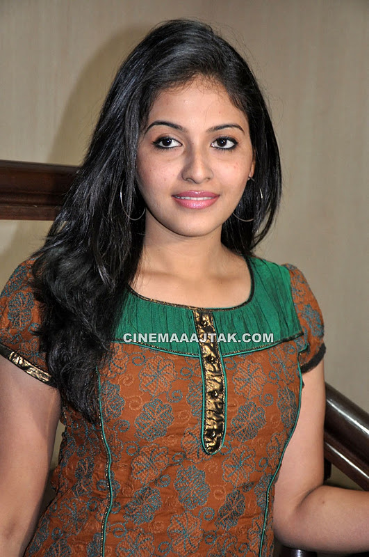 Anjali At Maharaja Movie Press Meet - MASALA PHOTOSHOOT