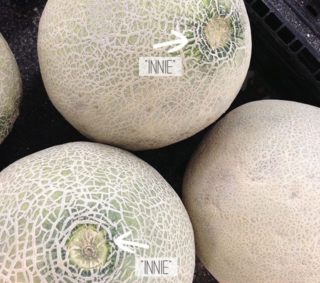 Stem End of a Cantaloupe - Look for an Innie