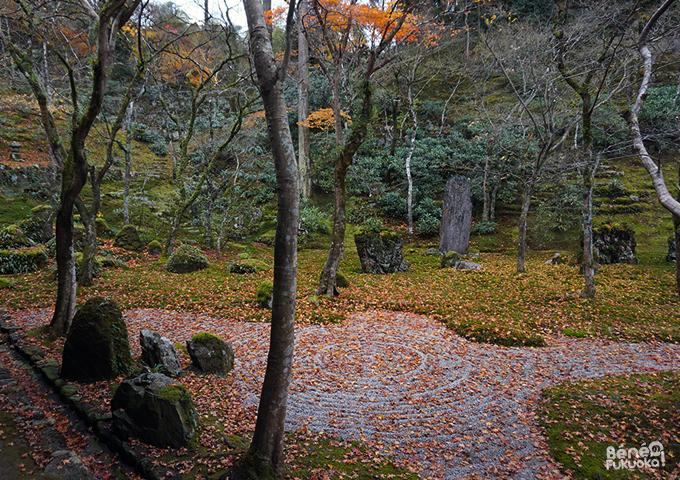 Jardin zen du Kômyozen-ji et feuilles d'érables - Dazaifu, Fukuoka