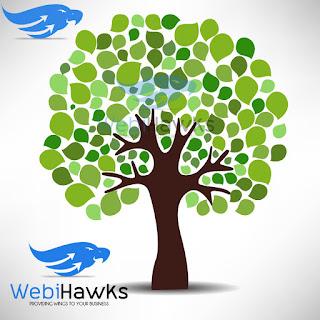 http://webihawks.com/