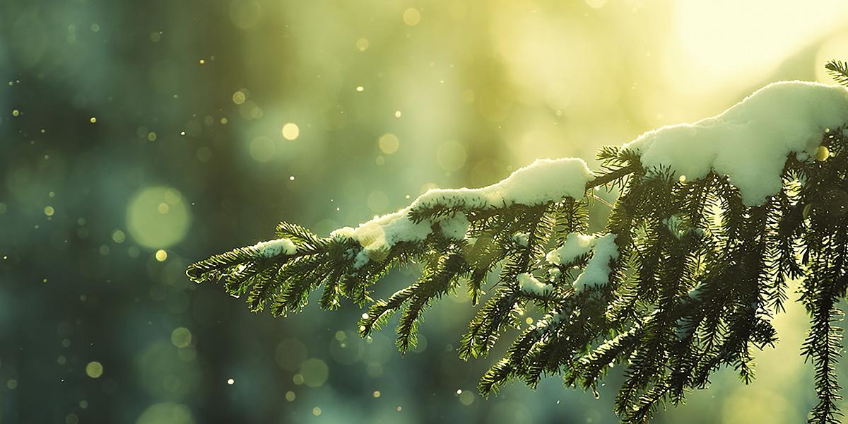 Snow 300+ Muhteşem HD Twitter Kapak Fotoğrafları