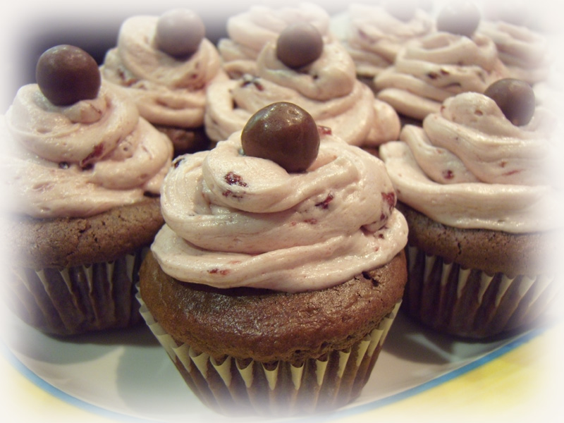 Double Chocolate Malt cupcakes with Cherry Vanilla Buttercream ...