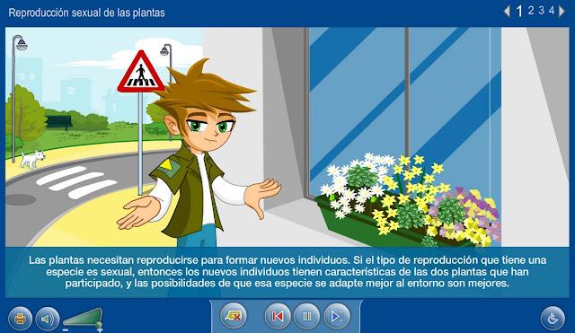 Reproducción sexual de las plantas
