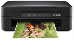 Epson Expression Home XP-100 Driver Download