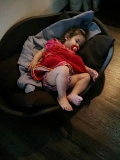 sleep in dog bed