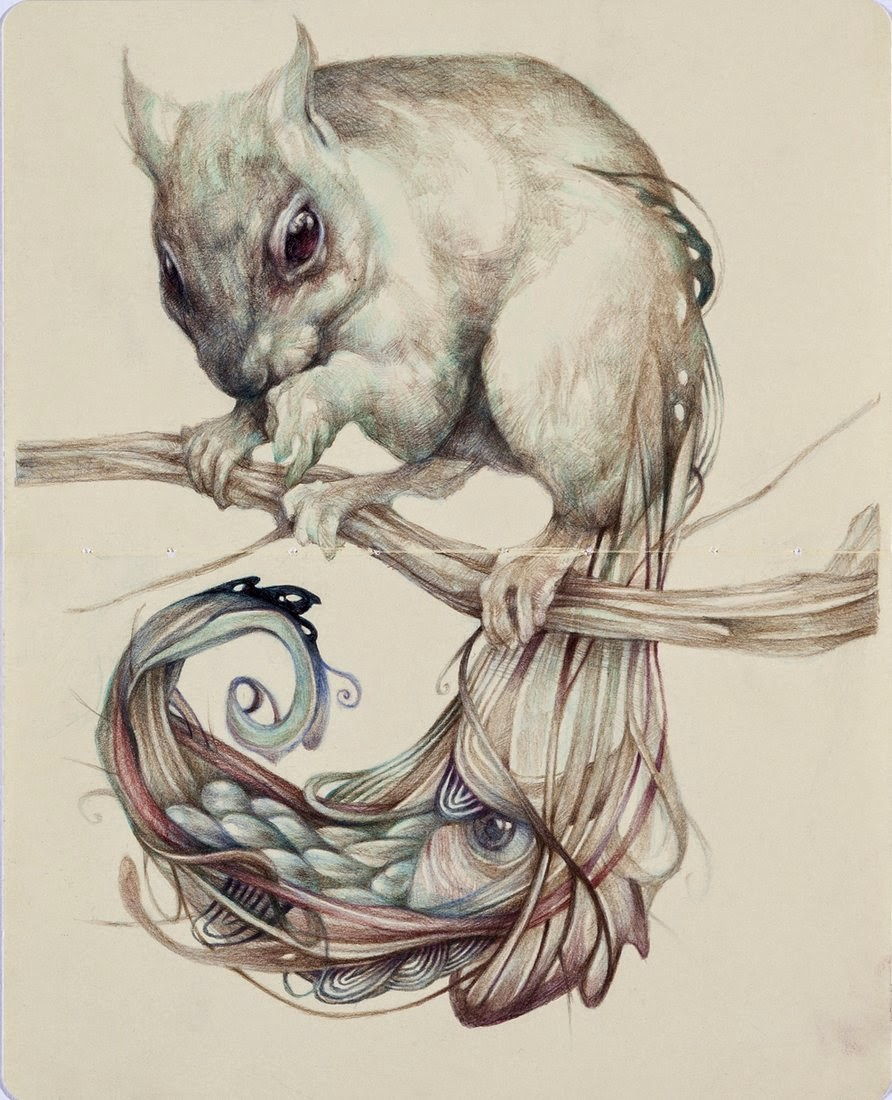 07-Marco-Mazzoni-Surreal-Animal-Drawings-www-designstack-co