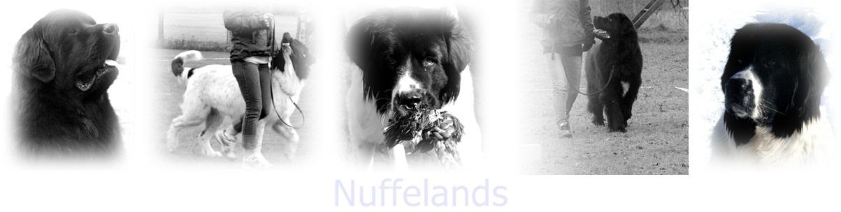 Nuffelands