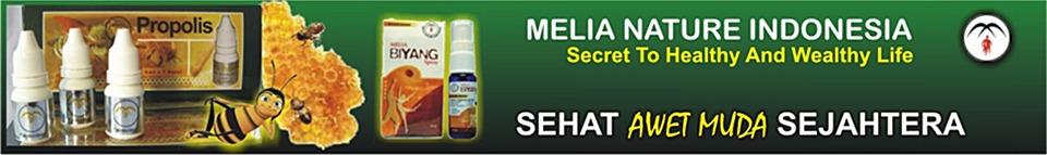 Propolis Melianature Indonesia