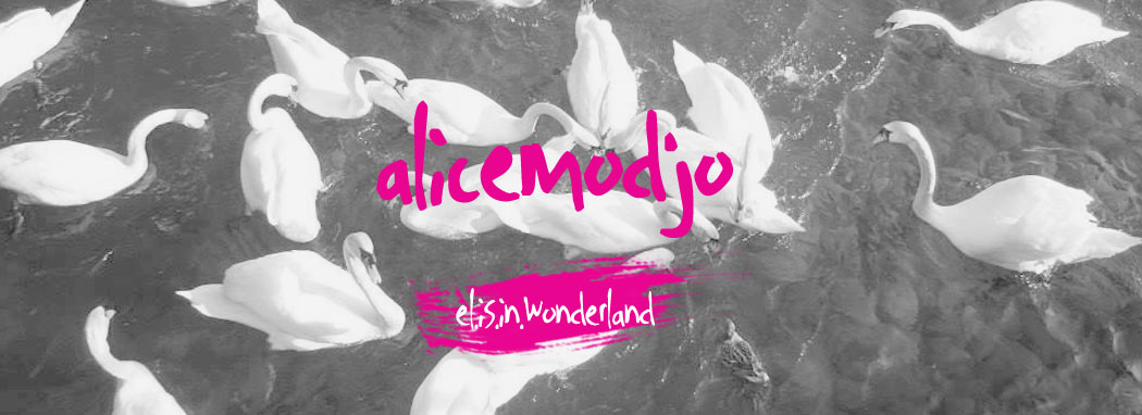 {el.is.in.wonderland}