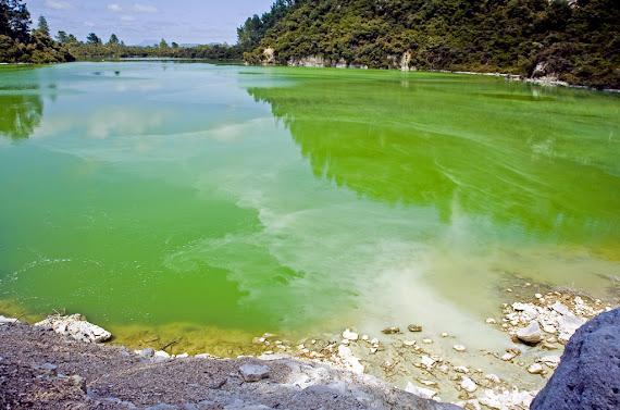 Lacul Ngakoro
