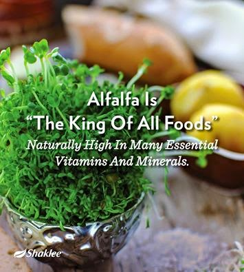 Fungsi Alfalfa, Kelebihan Alfalfa, Khasiat Alfalfa