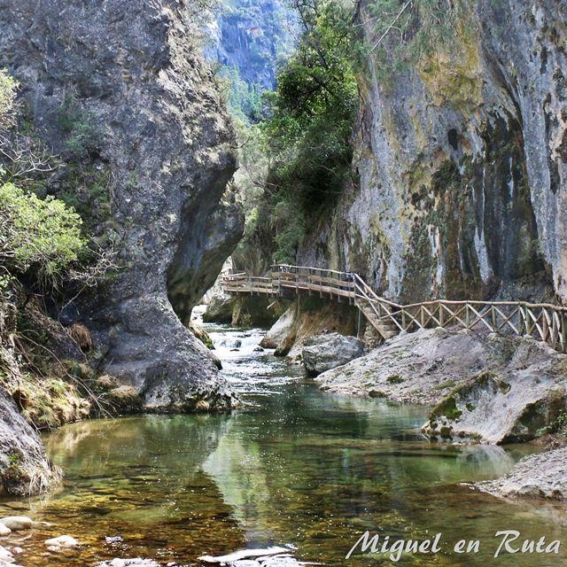 Río-Borosa-pasarela