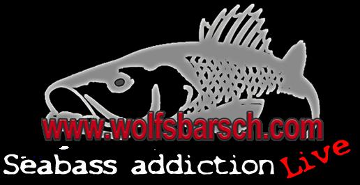 seabass addiction live