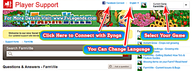 Zynga Player Support Help Chat