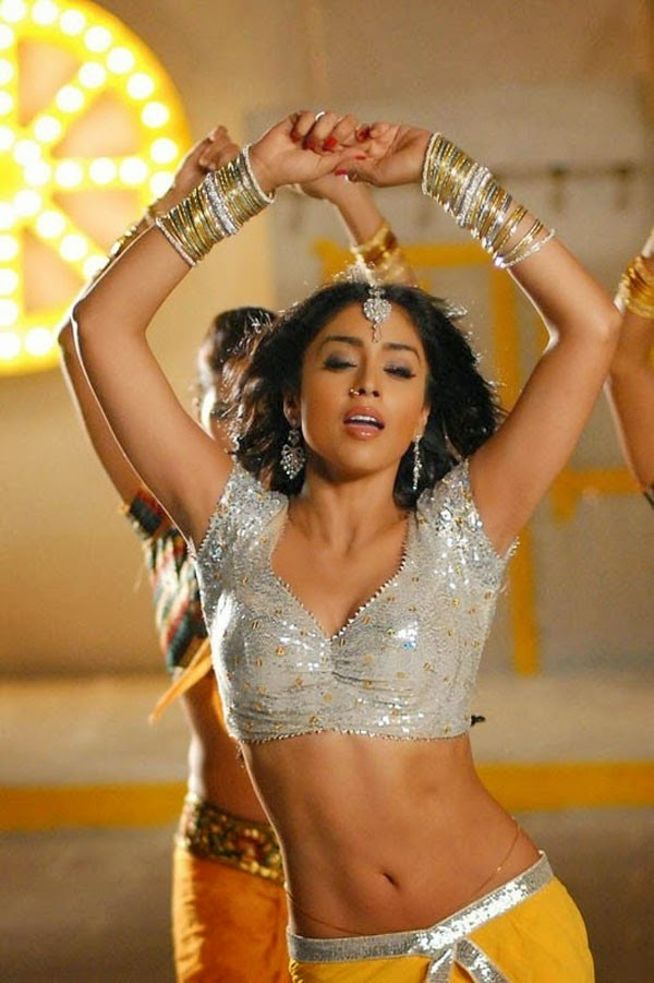 Shriya Saran Hot Navel cleavage show pictures