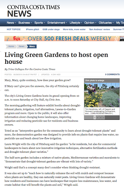 The Living Green Gardens