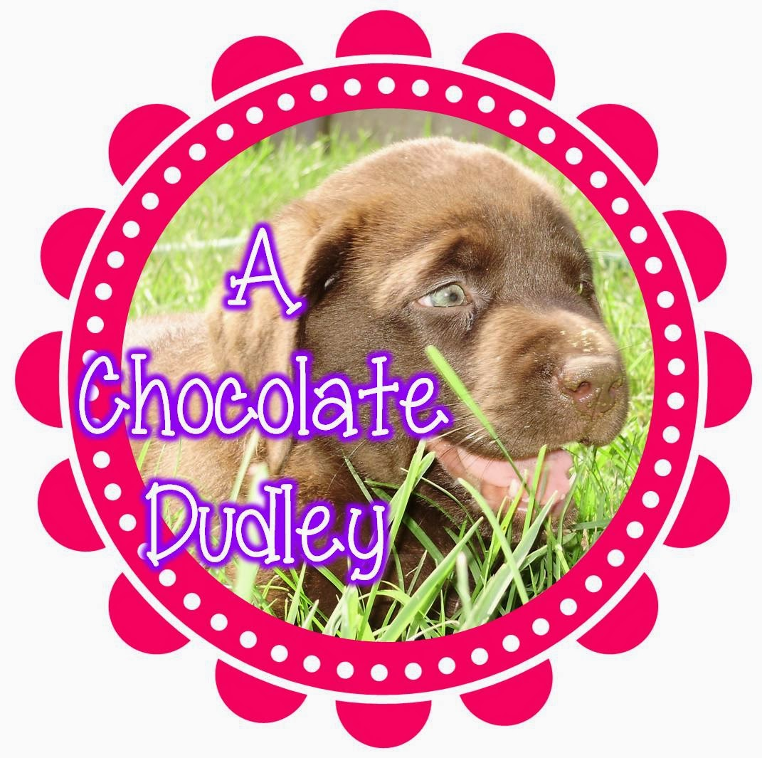 A Chocolate Dudley on TpT