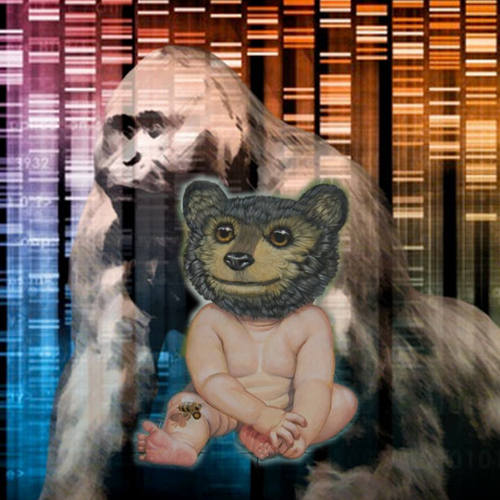 bigfoot-dna-bear-human.jpg
