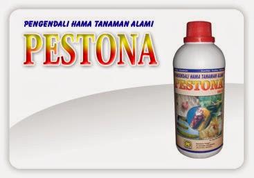 PESTONA  merupakan formula pengendali organik bagi beberapa hama penting pada tanaman pangan, hortikultura dan tahunan, hasil ekstraksi dari berbagai bahan alami
