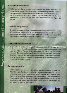 Pasquín Balsa de Larralde Torre Medina Zaragoza