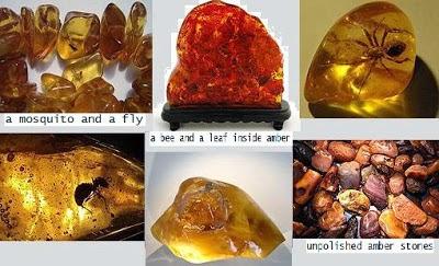 Batu Amber Merah | Info Batu Akik 2015, Batu Amber Hijau | Info Batu Akik 2015, amberizal jambi stone