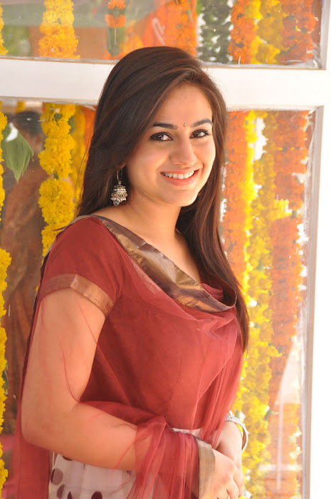 aksha at srikanth new movie launch