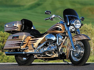 Harley-Davidson Screamin Eagle Road King