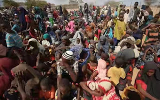 Over 40,000 displaced in Benue killings – SEMA