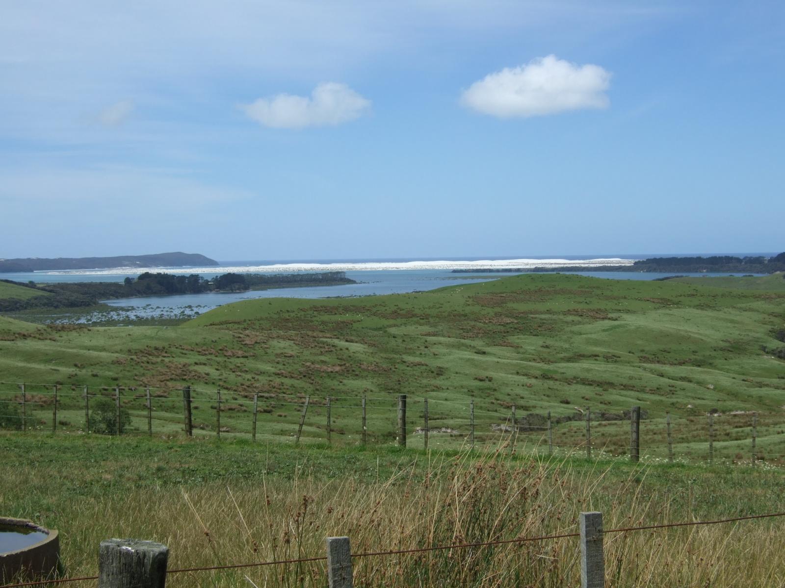 草原,ニュージーランド〈著作権フリー無料画像〉Free Stock Photos