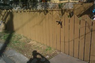 Деревянный забор. Фото 94